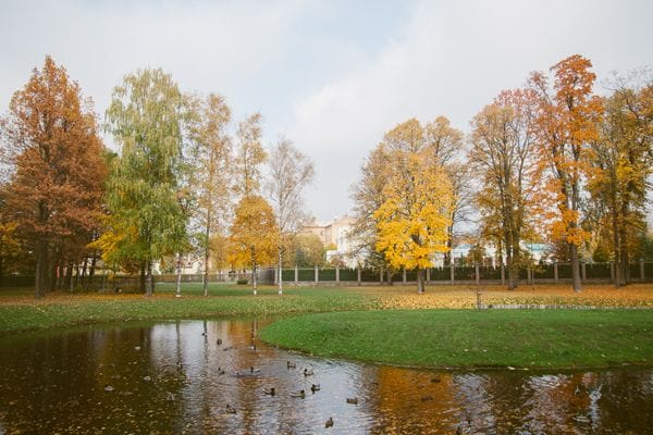 Kobe garden Riga