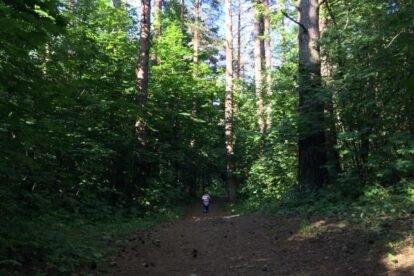 Šmerlis Forest Riga