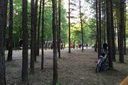 Anniņmuižas mežs Riga