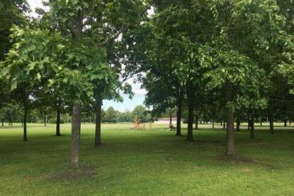 Uzvaras Parks Riga