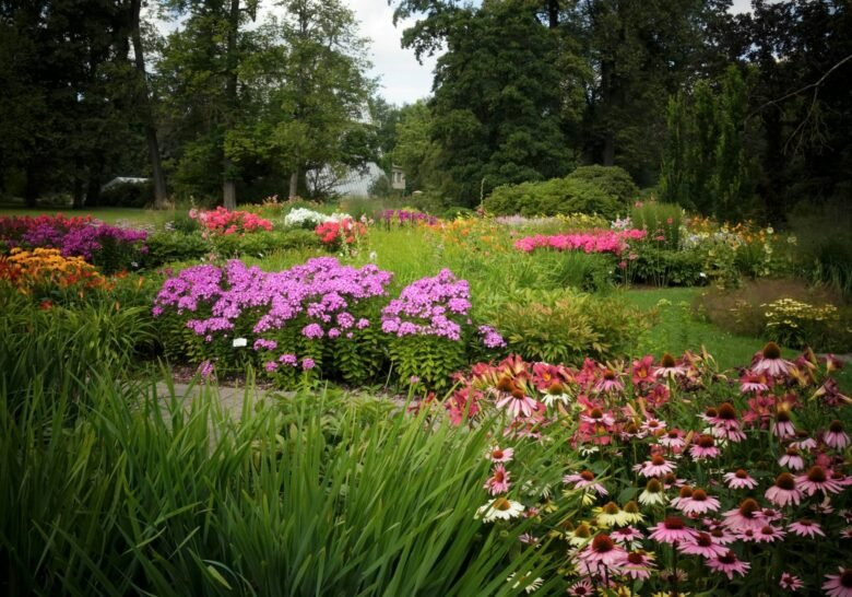 Rīgas Botāniskais Dārzs Riga