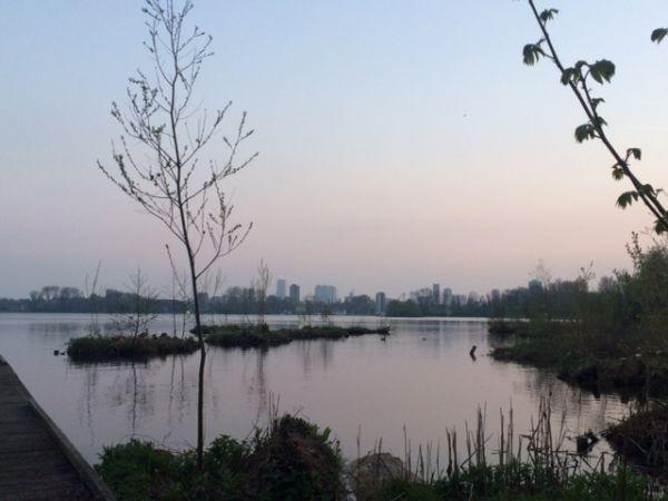Heemtuin Kralingse Bos Rotterdam