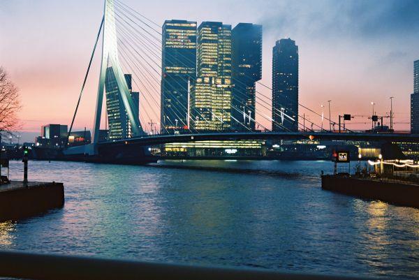 Leuvehoofd Rotterdam