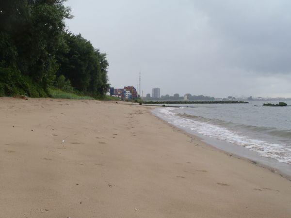 Quarantine Beach Rotterdam