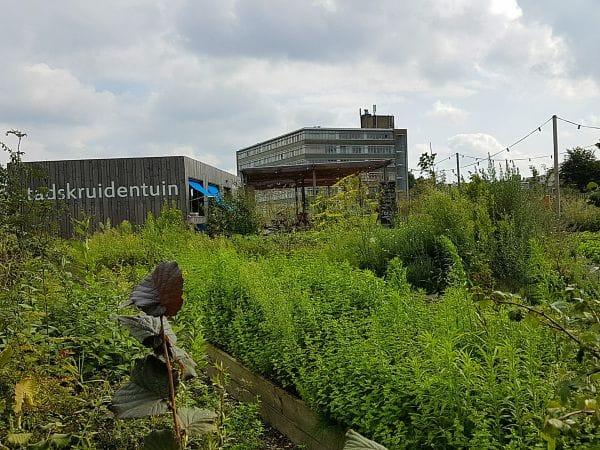 Rotterdamse Munt Rotterdam