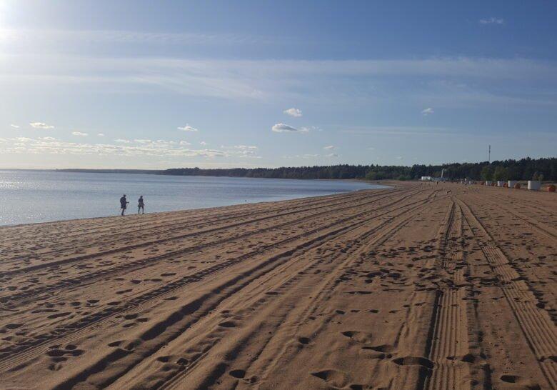 Beach Laskovyi (Tender) Saint Petersburg