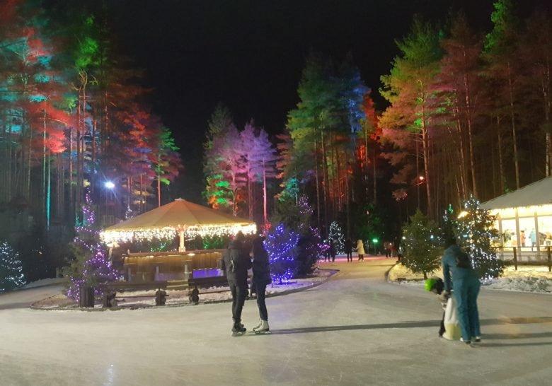 Forest Ice Rink Saint Petersburg
