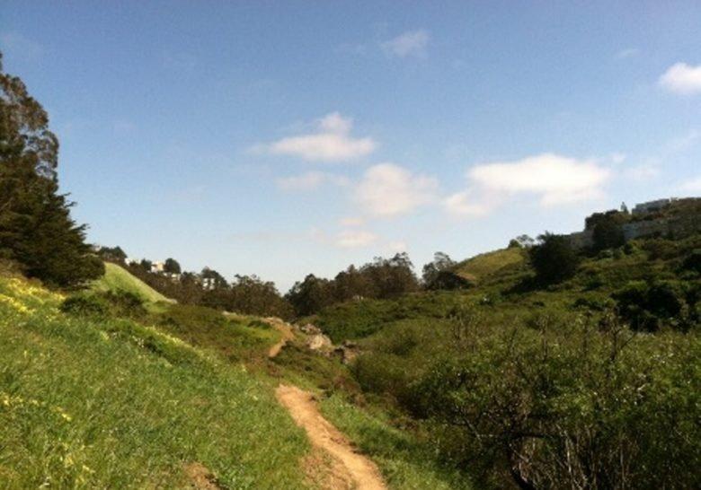 Glen Canyon Park San Francisco