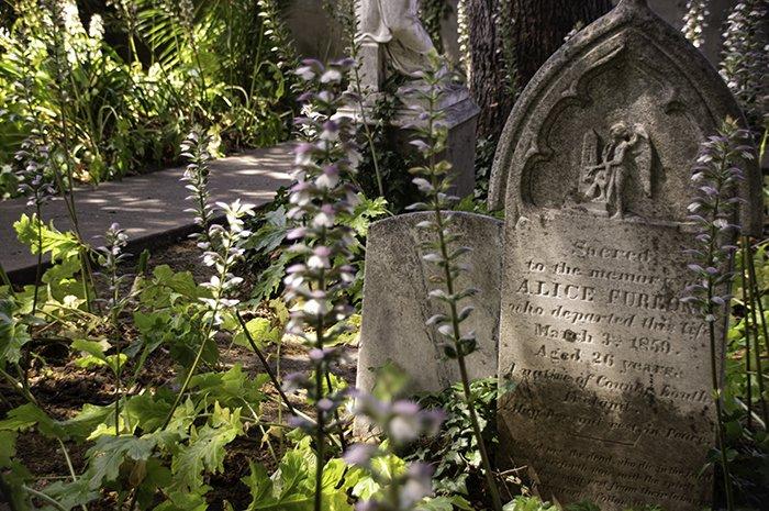 Mission Dolores Cemetery San Francisco
