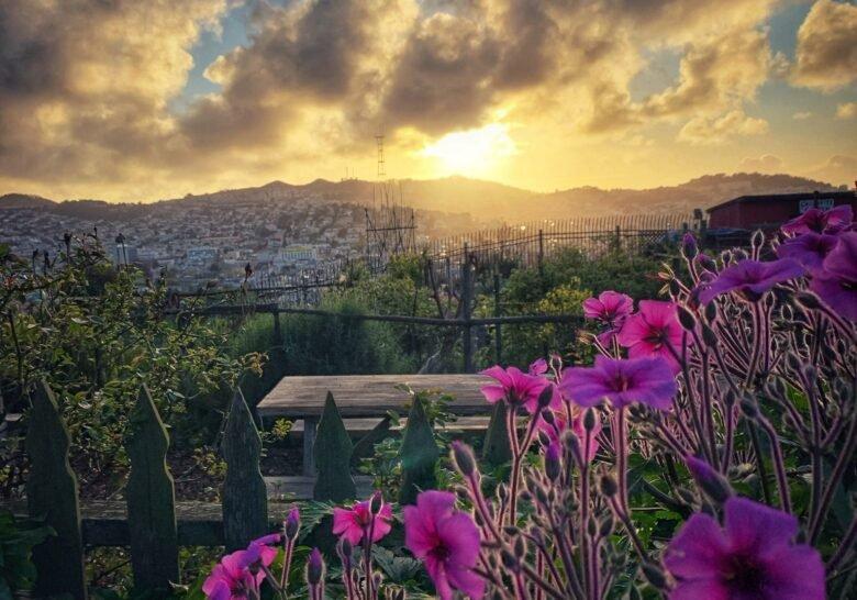 Portrero Hill Community Garden San Francisco