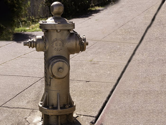The Golden Fire Hydrant San Francisco