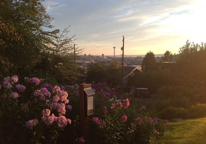 Blaine St. Stairs/Streissguth Gardens Seattle