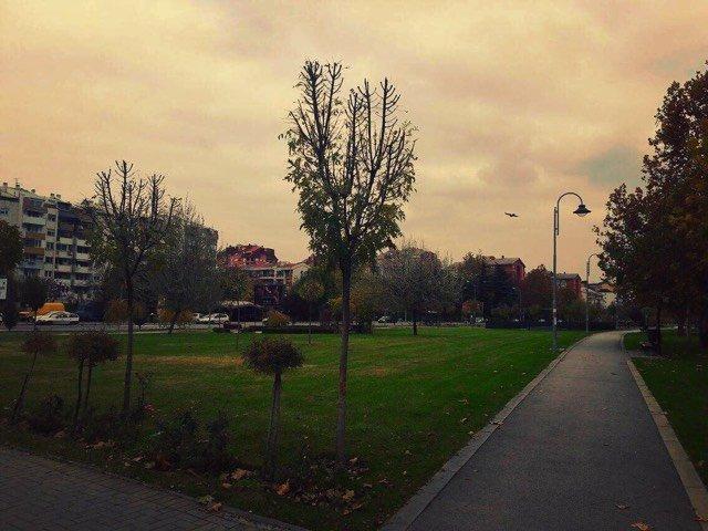 The Park In Kapishtec – Joggers and puppies