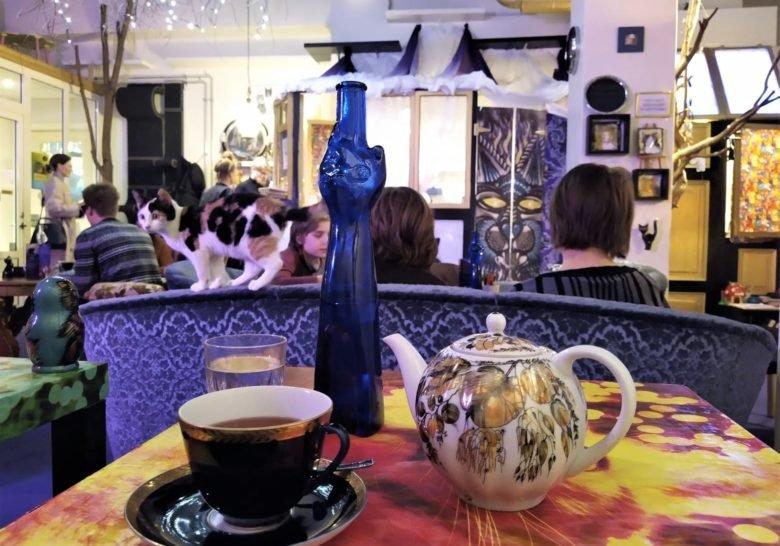Cat Café Purnauskis Tampere