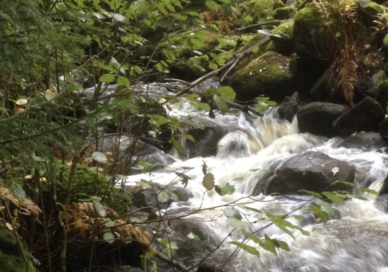 Myllypuro Stream Tampere