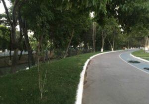 Baynalminal St./Seoul Alley Tashkent