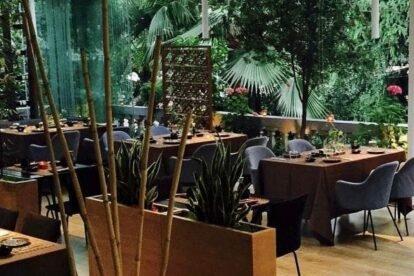 The Very Best Local Restaurants in Tirana