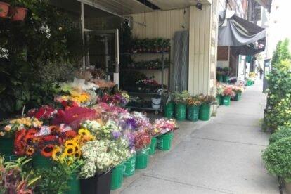 The Florists of Avenue Road Toronto