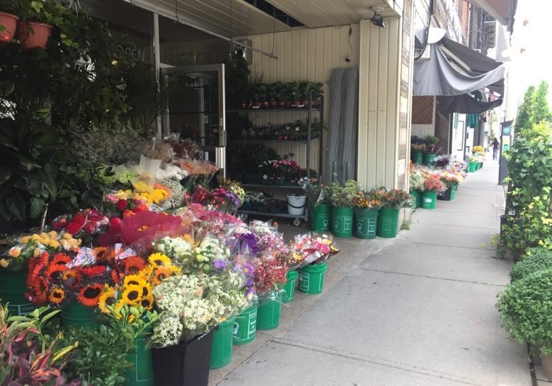 The Florists of Avenue Road Toronto