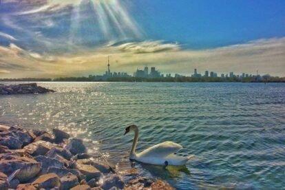 Tommy Thompson Park Toronto