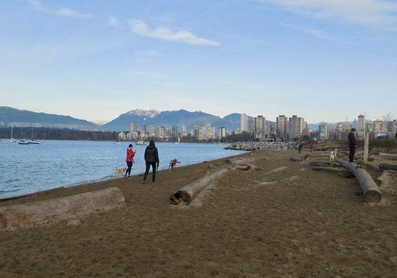 Hadden Park Dog Beach Vancouver