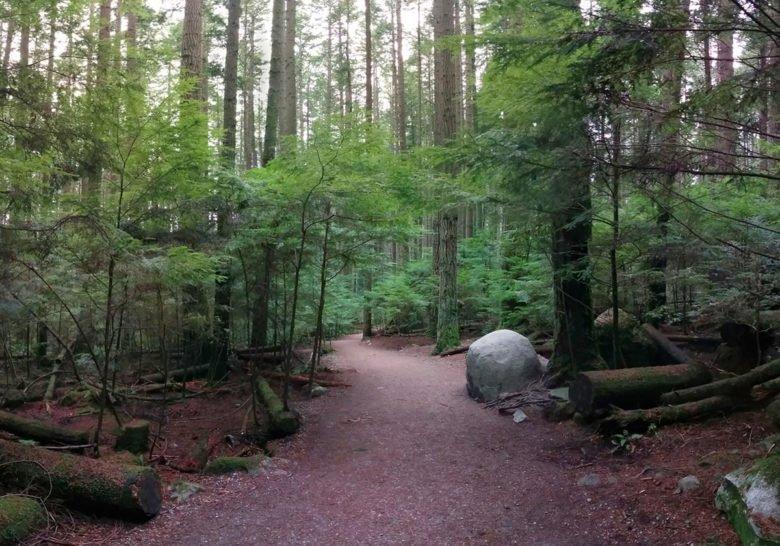 Pacific Spirit Park Vancouver
