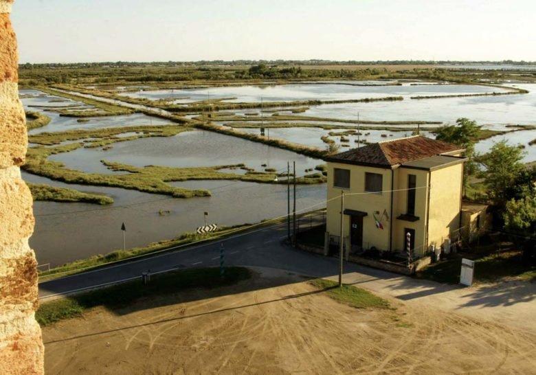 Lio Piccolo Venice
