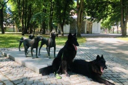A Sculpture for Lithuanian Hounds Vilnius