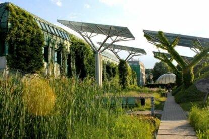 The UW Library Garden – Garden of the future