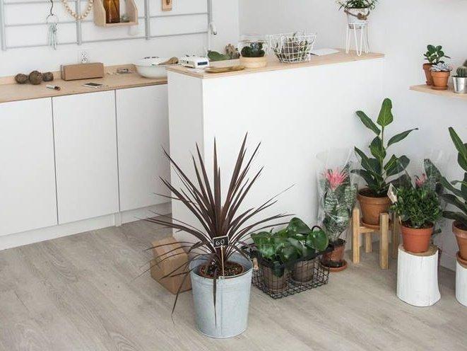 Plantarium Warsaw