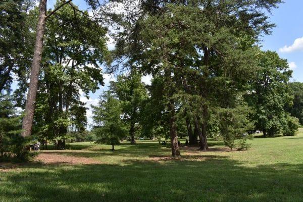 National Arboretum Washington DC