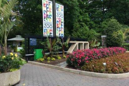 The National Zoo Washington DC