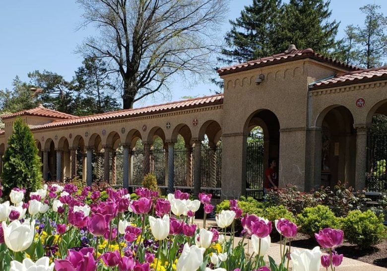 Franciscan Monastery Washington DC