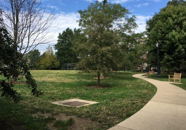Mitchell Park Washington DC