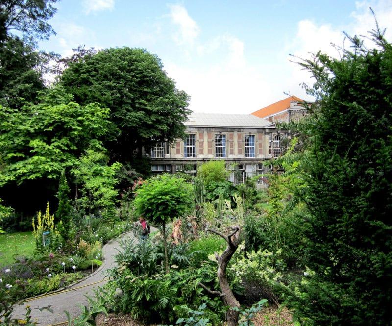 Botanical Garden Antwerp (by Kevin Ducheyne)