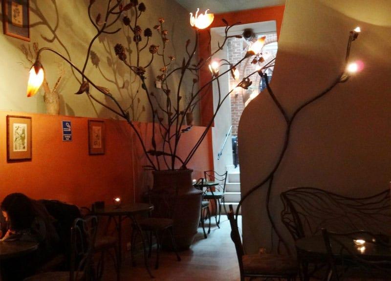 Cafe Botanica Krakow (by Ewelina Tłuczek)