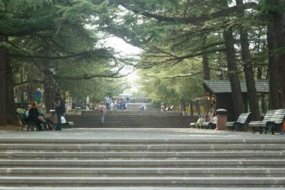 Stairs going up in the park