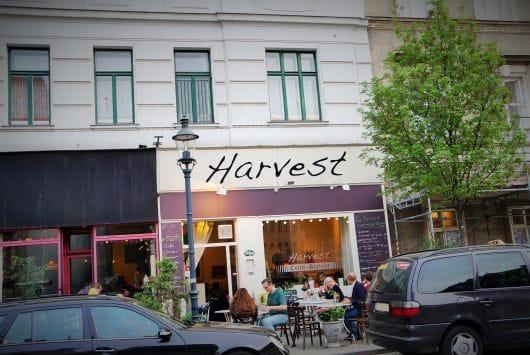 Harvest(by Julia Heiligenbrunner)