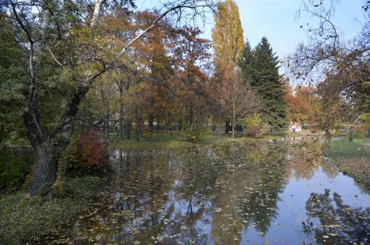 Skopjes-City-park (by-Vladimir-Calovski)