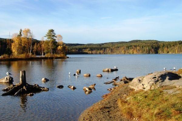 sognsvann-oslo-(by-elin-reitehaug)