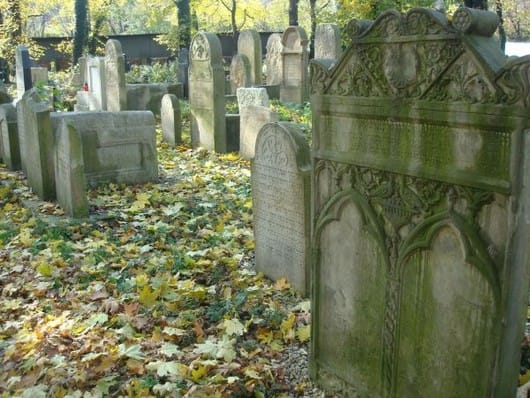 the-new-jewish-cemetery-krakow-(by-anna-wontorczyk)