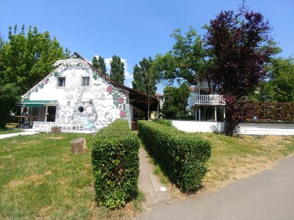 Hendrick's Garden – Having drinks in a tree house